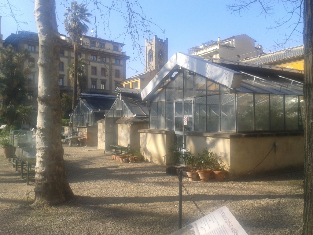 Florence Italy botanical garden glass houses photography Tamara Jare