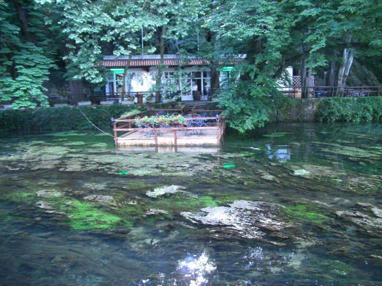The greenest terrace