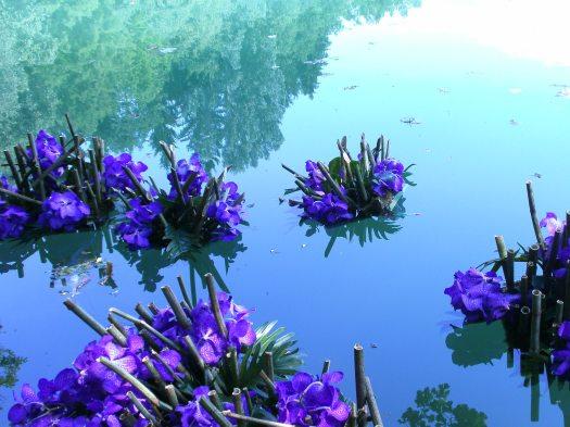 Flower islands