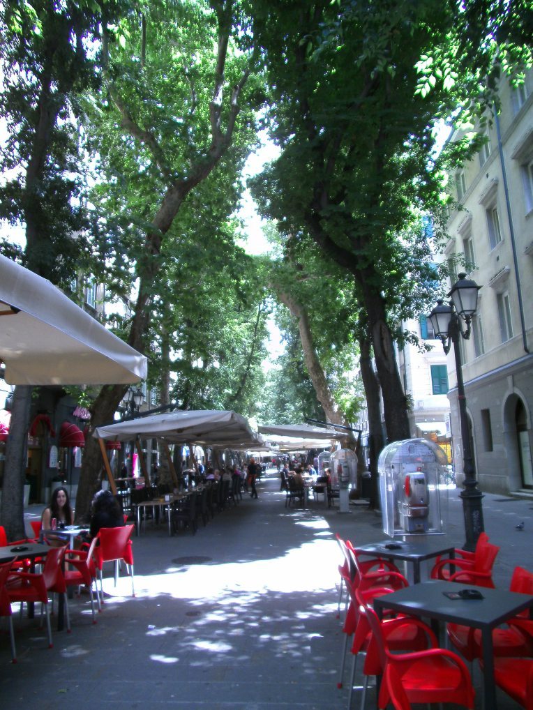 August under trees, Trieste