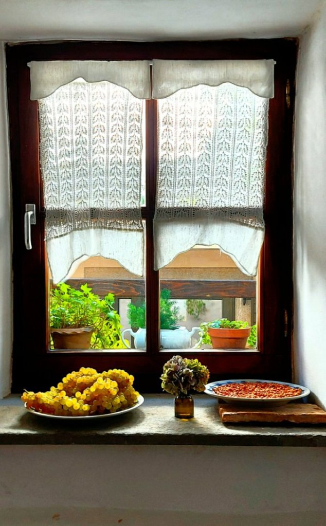 Ribolla Gialla grapes on the plate on the window with white curtains